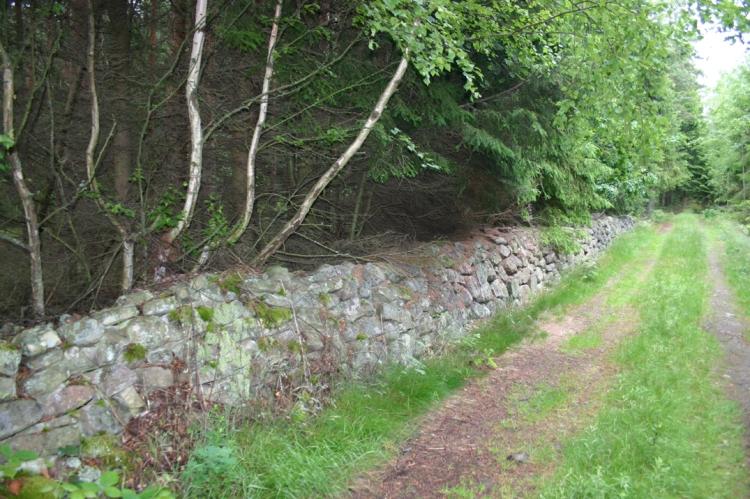 Här låg en gång åkern Knappnålelandet. Skogsvägen kallas Granfeldtegatan.